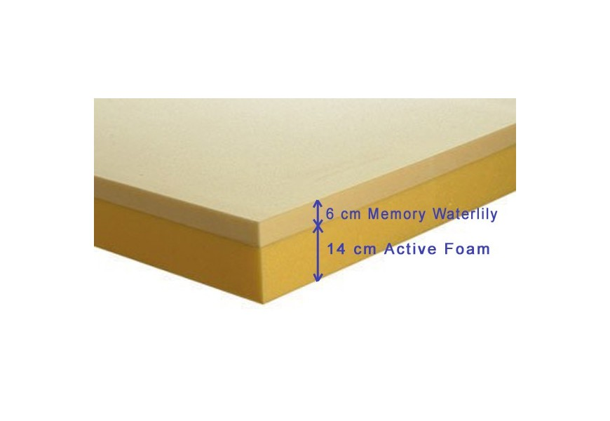Memory SIX Waterlily
