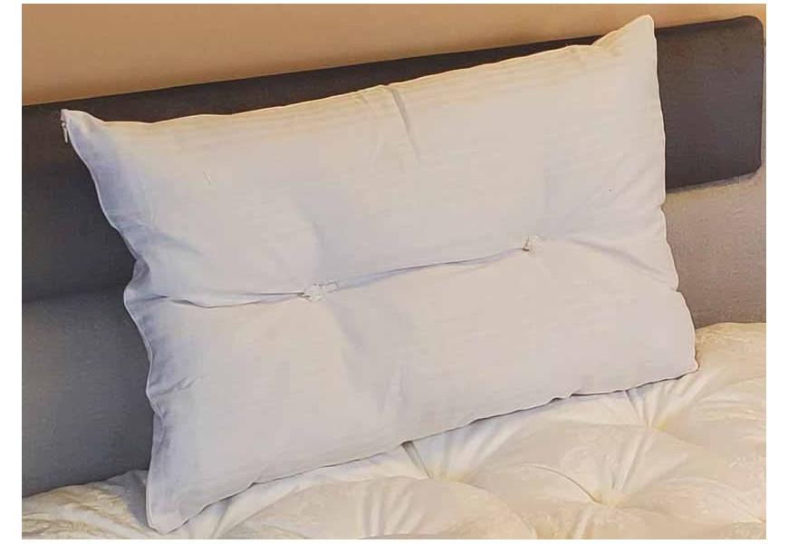 Organic Natural Pillows