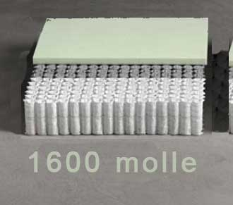 1600 micromolle